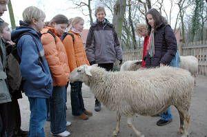 ZOOM Erlebniswelt Gelsenkirchen Für Lernende Lernorte Lernorte: MINT MINT Lernorte: Umwelt & Natur