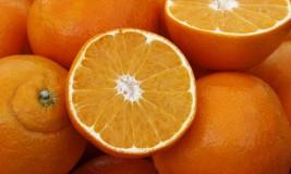 Fachkraft für Fruchtsafttechnik – Was machen die eigentlich?