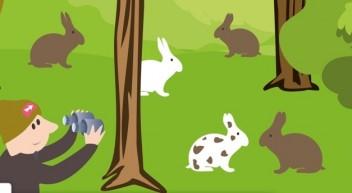 iStage: Was können uns Kaninchen über die Evolution lehren?