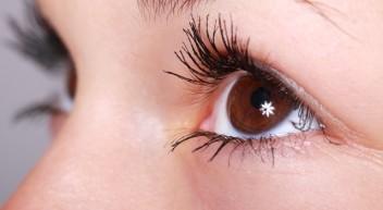 Bachelorstudiengang Augenoptik/Optometrie