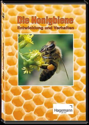 180285_Honigbiene