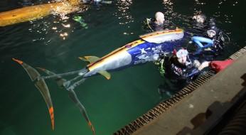 """Zweiter Platz für das """"HSRW-Submarine-Team"""" in Washington"""
