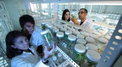 Schülerferiencamp: Lebende Zellen im Labor erforschen