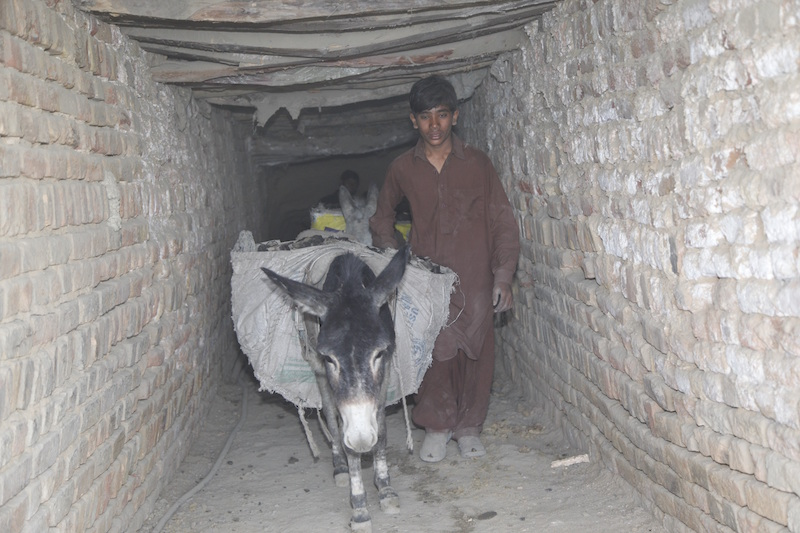 Action!Kidz-Pakistan