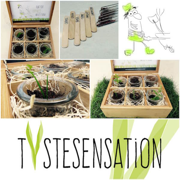 TasteSensation - Happy Garden