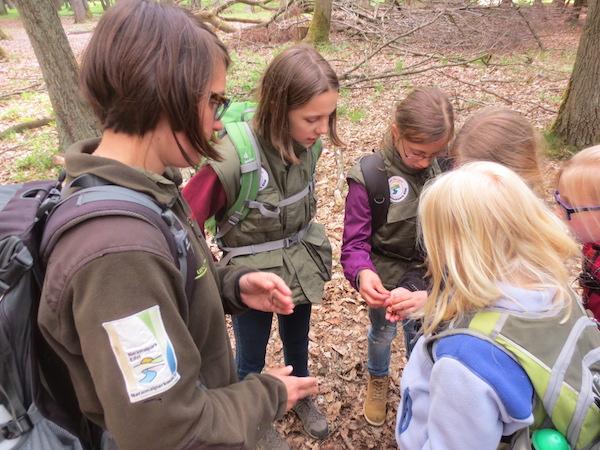 Natur- und Landschaftspfleger - mein Erfahrungsbericht Ausbildung Erfahrungsberichte