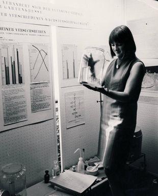Jugend forscht als Wegweiser: Von der ersten Chemie-Bundessiegerin zur Fachlehrerin für Chemie und Physik Aktuelles Pressenews