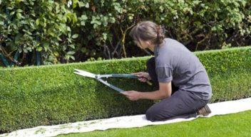 Landschaftsgärtner/in – was machen die eigentlich?