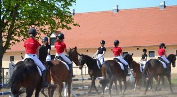 Integration des Pferdesports in den Unterricht – Gesamtschule Neustadt (Dosse)