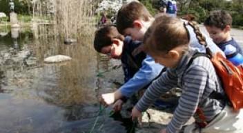 Schule Natur – Vernetztes Lernen im Botanischen Garten