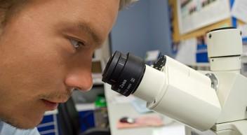 Was macht man als … Veterinärmedizinisch-technische/r Assistent/in?