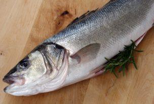 Was macht man eigentlich so…. als Fischwirt/in?