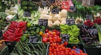 Foodsharing.de – Gegen Lebensmittelverschwendung