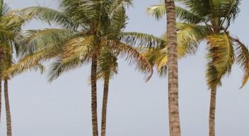 Kaufmann-/frau für Tourismus und Freizeit