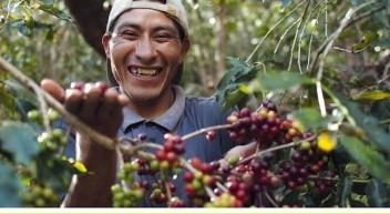 Kaffee – Das Unterrichtsmaterial
