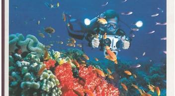 Nachhaltiger Tourismus – Natur erleben und schützen