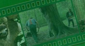 """""""Regenwald retten geht auch einfacher"""""""