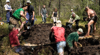 Ökologische Arbeitseinsätze mit dem Bergwaldprojekt e.V.