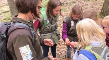 Natur- und Landschaftspfleger – mein Erfahrungsbericht