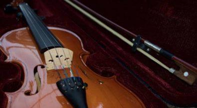 Musikinstrumentenbau studieren