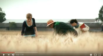 Agrarbiologie studieren an der Uni Hohenheim