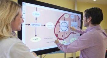 Das Medienportal der Siemens Stiftung: OER für den MINT-Unterricht