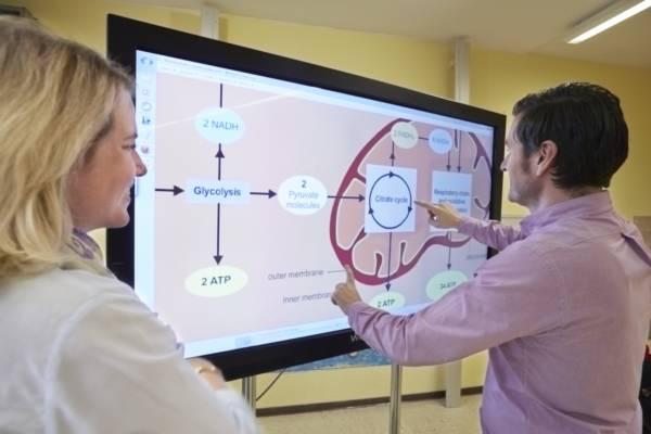 Whiteboard mit englischem Tafelbild. Lehrerin Caroline Mutzbauer und Lehrer Armin Mutzbauer, Erich Kästner-Schule in Höhenkirchen-Siegertsbrunn