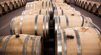 Weintechnologen – was machen die eigentlich?