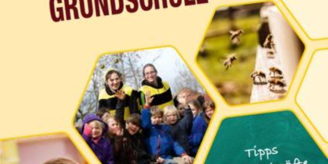 Tipps für Lehrkräfte: Bienen in der Grundschule