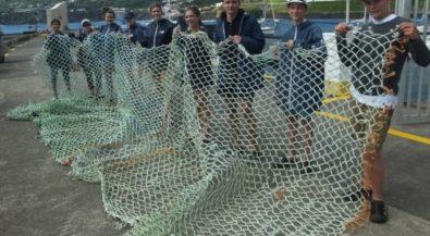 Wal- und Delfinforschung auf den Azoren