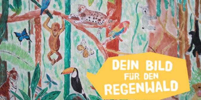 Dein Regenwald-Bild rüttelt unsere Politiker wach