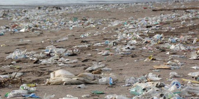 Plastikmüll im Unterricht
